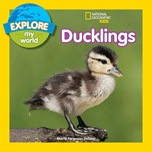 Explore My World: Ducklings