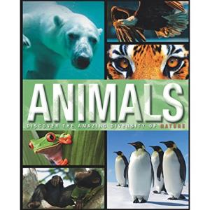 Animals- Discover The Amazing Diversity Of Nature