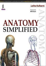 ANATOMY SIMPLIFIED